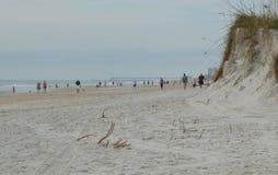 Люди на пляже около дюны Стоковые Фото