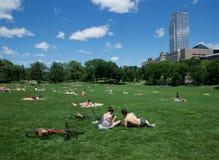 Люди ослабляя на Central Park, Нью-Йорке стоковая фотография