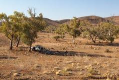 Люди отдыхают в тени дерева. Ряды щепок. Южная Австралия. Стоковые Фото