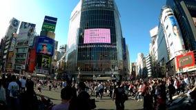 Люди пересекают известное пересечение скрещивания Shibuya сток-видео