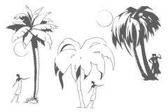 Люди под пальмами Остатки морским путем Стоковые Фотографии RF