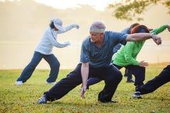 Люди практикуют хи Chuan Tai в парке Стоковое Изображение RF