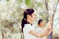 Люди практикуя тайский хи в парке стоковые фотографии rf