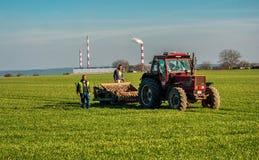 Люди работая в поле Стоковое Фото