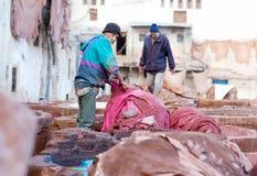 Люди работая крепко в souk дубильни в Fez, Марокко Стоковая Фотография