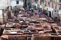 Люди работая крепко в souk дубильни в Fez, Марокко Стоковое Изображение