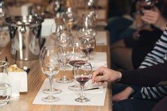 Люди рассматривают цвет вина и попытки как они пахнут в различных стеклах Стоковое Изображение