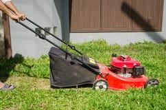 Люди резали траву Стоковое фото RF