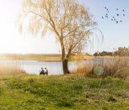 Люди сидя на береге озера Стоковые Изображения RF