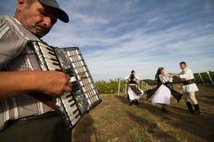 Люди танцуя на традиционном винограднике Jidvei жмут справедливо Стоковое Изображение