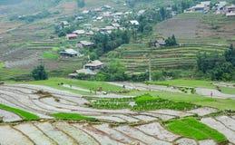 Люди Hmong работая на поле в Lai Chau, Вьетнаме Стоковое фото RF