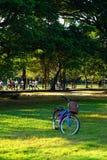 Люди jogging и задействующ в общественном парке в раннем утре на парке Wachirabenchathat Стоковое фото RF