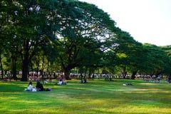Люди jogging и задействующ в общественном парке в раннем утре на парке Wachirabenchathat Стоковые Изображения