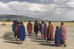 Люди Maasai стоковые фотографии rf