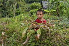 Люди PA Sa в Вьетнаме Стоковые Изображения RF