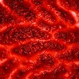 Людская ткань Стоковые Изображения