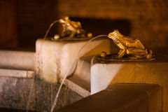Лягушка ваяет детали фонтана Стоковые Изображения