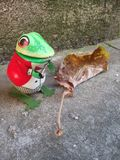 Лягушка игрушки олова Стоковая Фотография