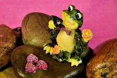 Лягушка поя на утесах в пруде, торжество концерта стоковое фото rf