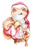 лягушка рождества шальная Стоковые Фотографии RF