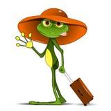Лягушка с чемоданом Стоковые Фотографии RF