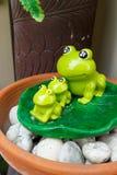 Лягушка 3 Стоковые Фото