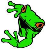 Лягушка Стоковое Фото