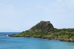 Лягушка Moutain, линия побережья Kenting Стоковое Фото
