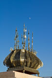мавзолей mohammed v Стоковые Фото