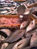 Магазин продукта моря Стоковая Фотография RF