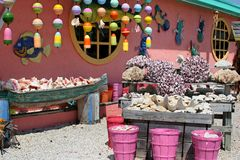 магазин раковины florida Стоковая Фотография RF