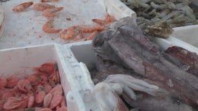 Магазин рыб в рынке акции видеоматериалы