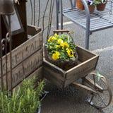 магазин цветка Стоковые Изображения RF