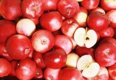 магазин яблока стоковая фотография rf