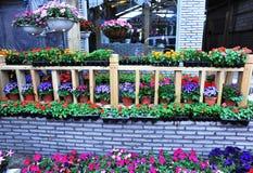 магазин potting цветка стоковая фотография