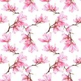 Магнолия акварели цветет безшовная картина Стоковые Изображения RF