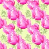 Магнолия Безшовная текстура картины цветков вектор детального чертежа предпосылки флористический Стоковое Изображение RF