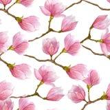 Магнолия моды цветет текстура Картина акварели нарисованная рукой безшовная для оборачивать, ткани, ткани, обоев и пакета Стоковое Фото