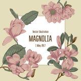 Магнолия Цветы Иллюстрация вектора в типе год сбора винограда карточка цветет приветствие ботаническую зацветая валы иллюстрация вектора