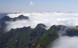 Мадейра стоковое изображение