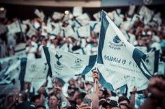 Мадрид, Испания - 1-ОЕ МАЯ 2019: Вентиляторы Tottenham в стойках поддерживают команду во время финального матча 2019 лиги чемпион стоковая фотография