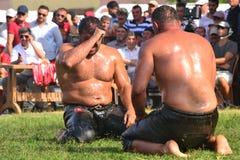 Мазеподобный wrestling спорт для турков Стоковое Фото