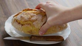 Маисовый хлеб с ножом на белом блюде сток-видео