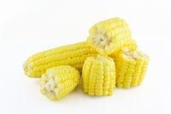 Маис зерна, свежая мозоль Стоковая Фотография RF