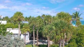 Майами, Флорида, США - май 2019: Воздушный полет взгляда панорамы трутня над Miami Beach Песок, пальмы и море сверху видеоматериал