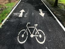 Майна велосипеда в парке Стоковое Фото