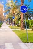 Майна велосипеда на заходе солнца с ладонями Стоковое фото RF
