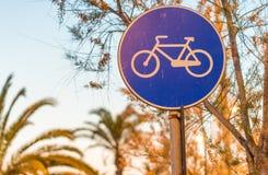 Майна велосипеда на заходе солнца с ладонями Стоковое Изображение RF