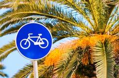 Майна велосипеда на заходе солнца с ладонями Стоковая Фотография RF