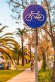 Майна велосипеда на заходе солнца с ладонями Стоковые Изображения